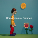 homeostasisbalance